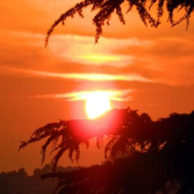 la-puesta-de-sol-en-shimla-india_19-128730