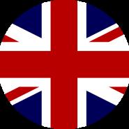 LT FLAG
